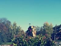 Honzík - Běhej lesy