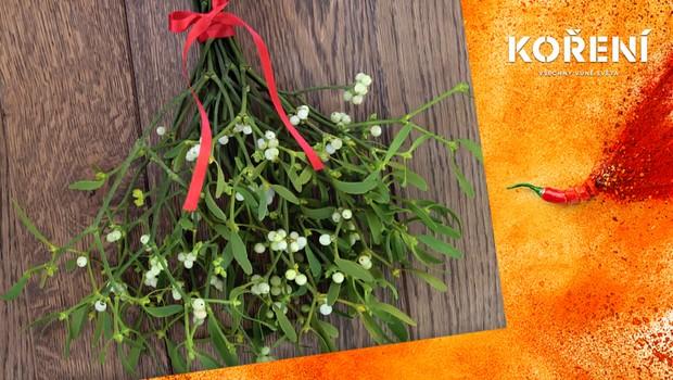 Jmelí symbolizuje dobro, štěstí a lásku. Ovlivní pandemie tuto vánoční tradici?
