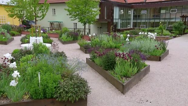 Rady ptáka Loskutáka – Terapeutická zahrada