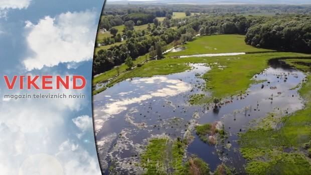 Jak se vyrovnat se suchem? Řešením může být vrácení krajiny do původního stavu