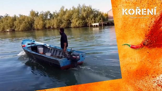 Benátský krab patří mezi vyhlášené delikatesy. Proč ubývají rybáři, kteří ho loví?