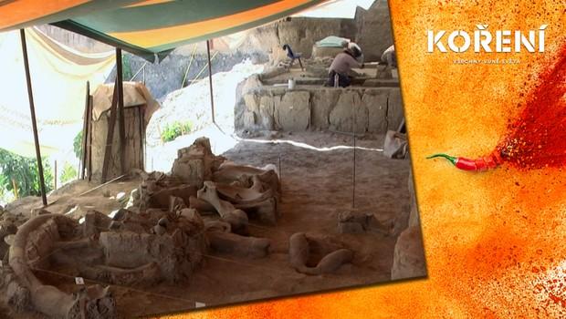 Nově nalezené vykopávky mění představy o pravěku! Jak probíhal lov mamutů?