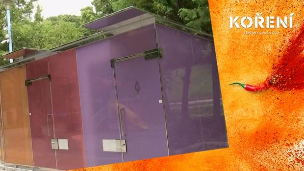 Průhledné veřejné toalety? V Tokiu se z nich stal obrovský hit!