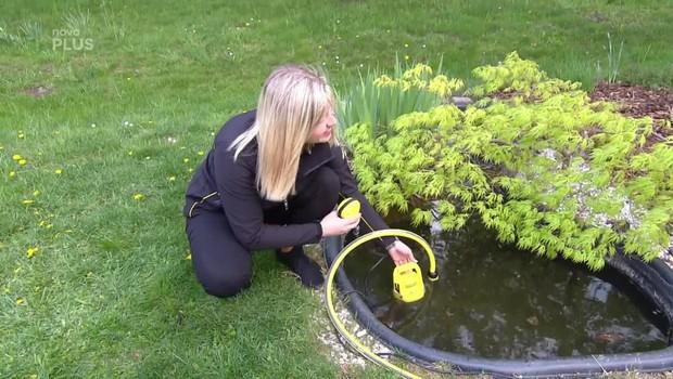 Rady ptáka Loskutáka - Děláme pořádek na zahradě