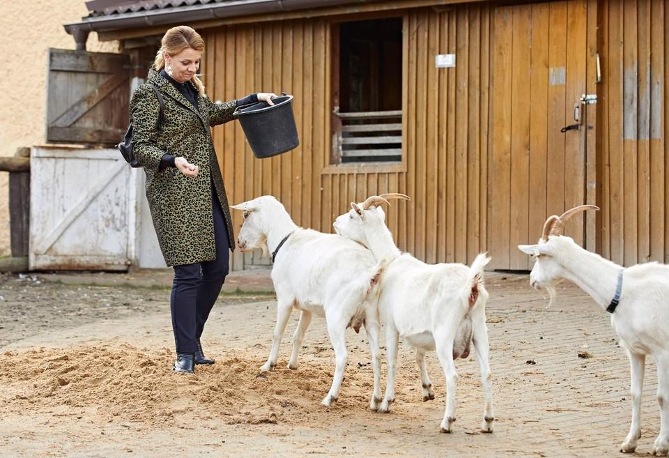 Ordinace: Heluš válčí s kozami! - 12
