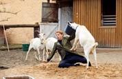 Ordinace: Heluš válčí s kozami! - 18