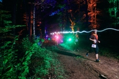 Běhej lesy 2020 (1)