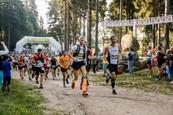 Běhej lesy 2020 (3)