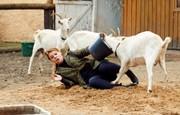 Ordinace: Heluš válčí s kozami! - 19